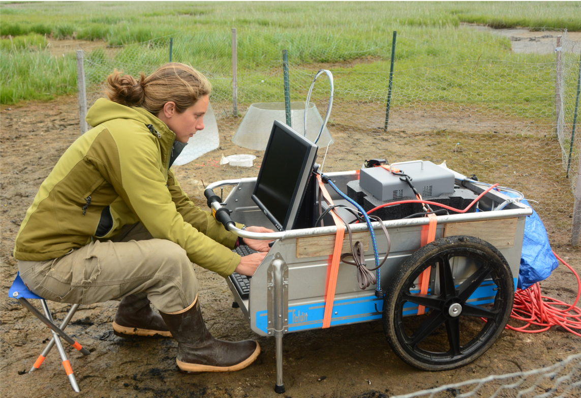 Dr. Kathy Kelsey collecting greenhouse gas data. PC: Ryan T. Choi
