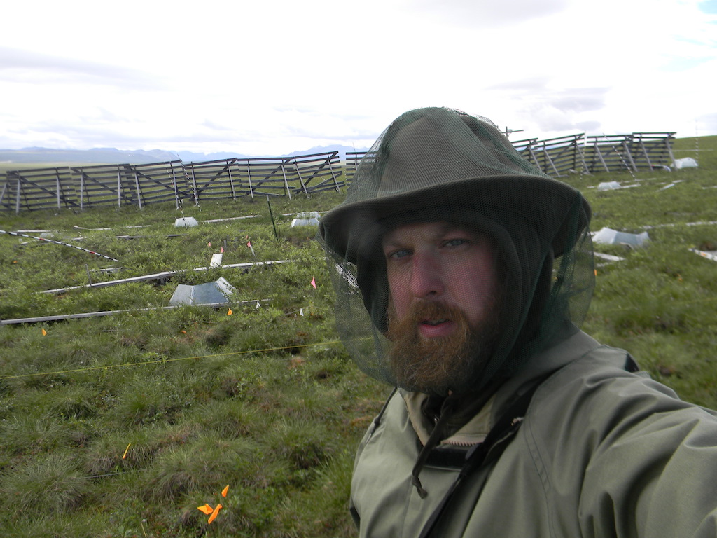 Michael Ricketts at field site near Toolik, Alaska