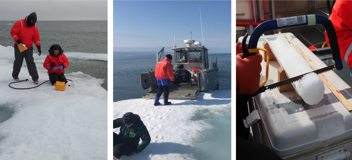 (L-R) Sampling on the ice, the ease of access using a ramp-equipped small boat, and preliminary ice core processing onboard during July 2017 offshore sea ice sampling. PC: Dr. Karen Junge