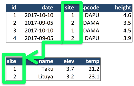 Example showing the ability to relate data from both tables through a join key